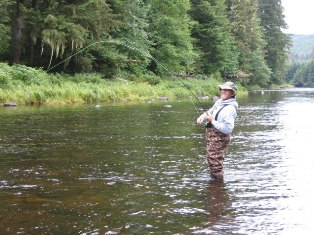 Black bear hunting sitka blacktail deer hunting for Prince of wales island fishing